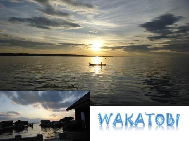 Wakatobi View - Behind of Hotel Wisata