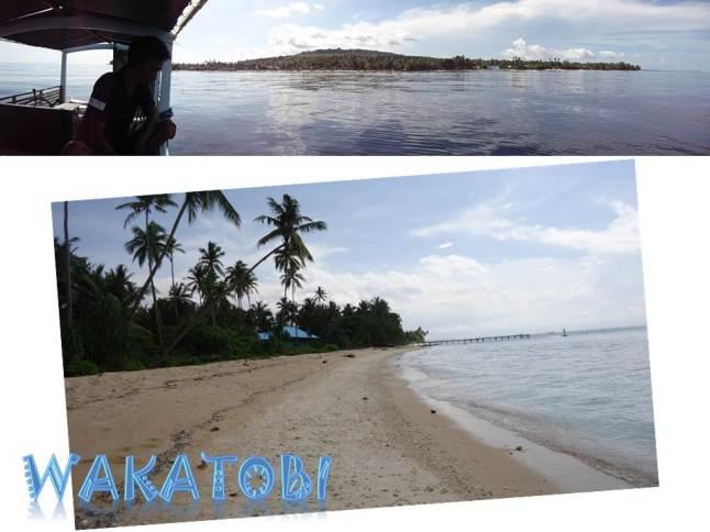 Waha Diving Site and Waha Beach