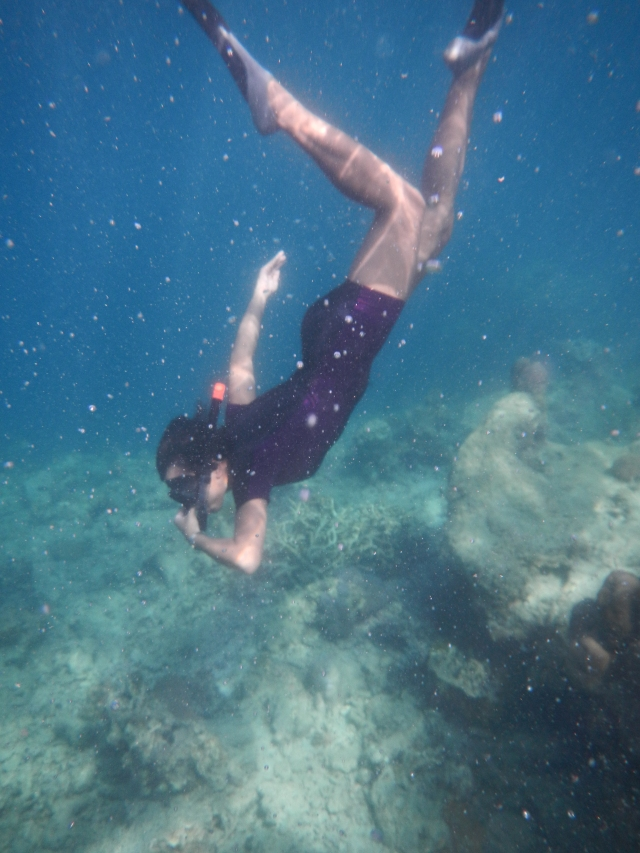 Underwater pic was included in the tour package